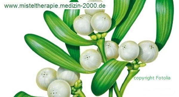 Info-Netzwerk Medizin 2000