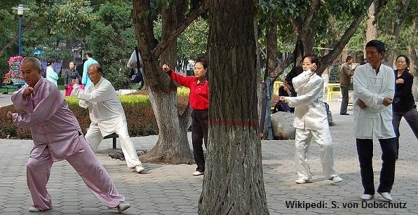 berlin echt chinesische heilkunst